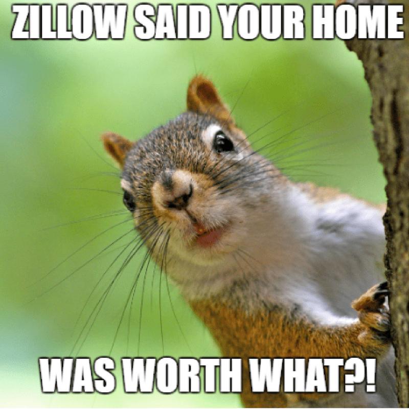 Squirrel surprised looking around tree real estate meme