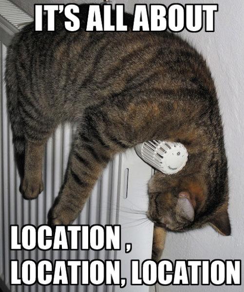 cat hanging on heater real estate meme